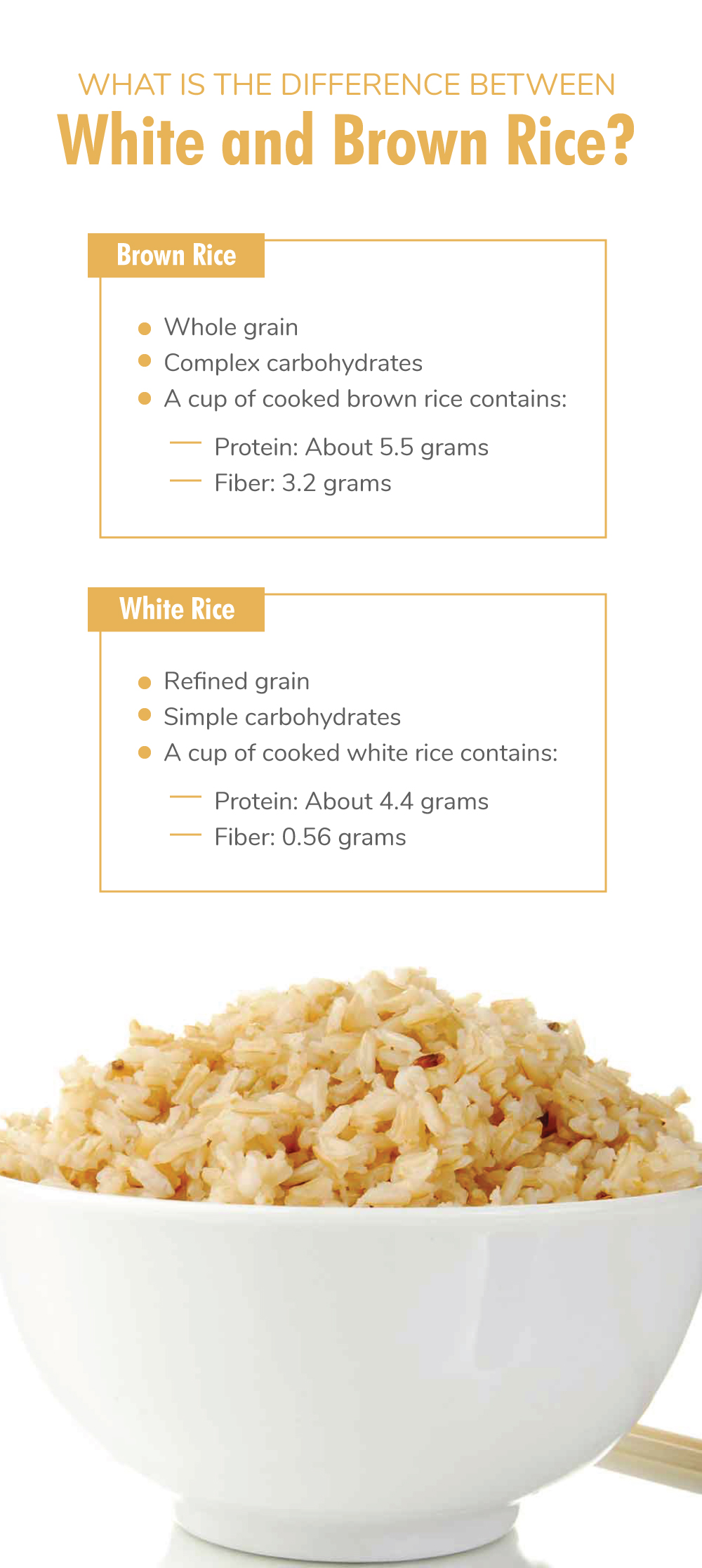 What Is the Difference Between White and Brown Rice?