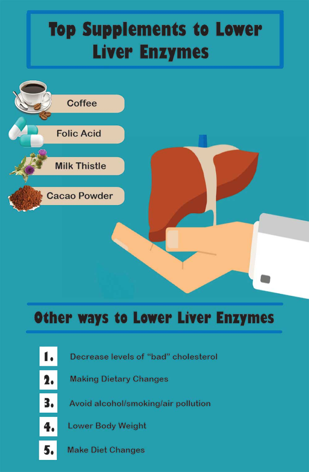 Best Supplements To Lower Liver Enzymes