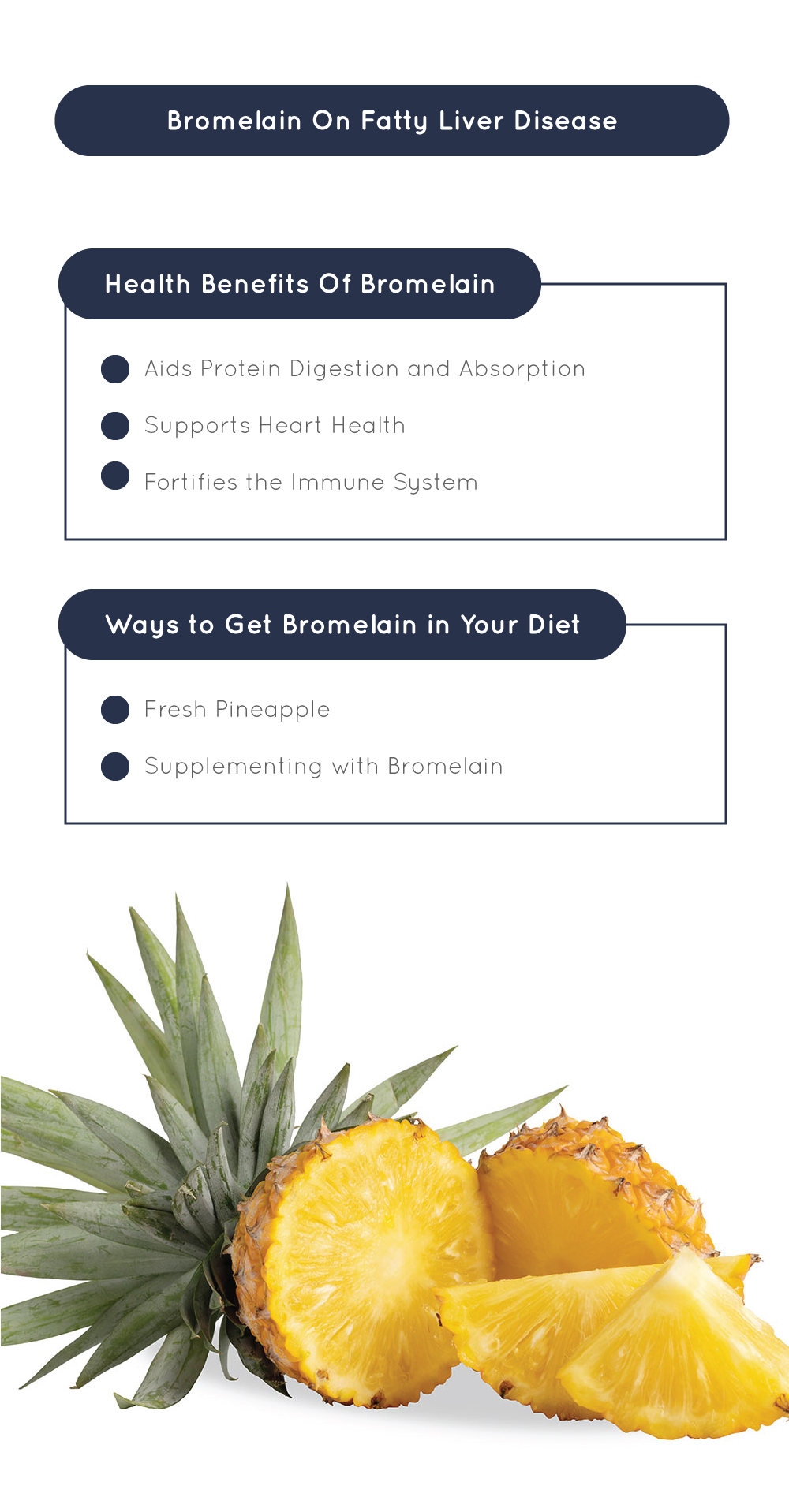 Bromelain On Fatty Liver Disease