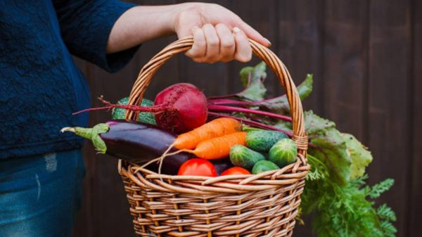 woman holding a basket filled with fresh vegetables