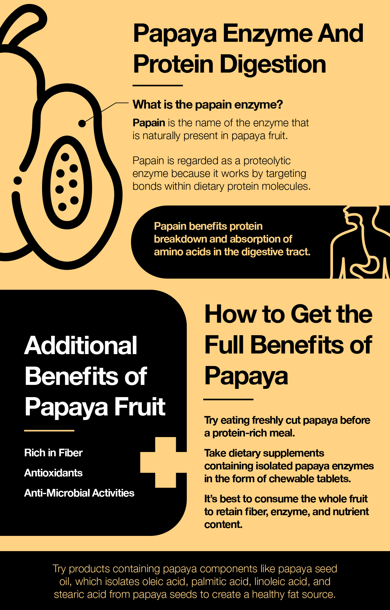 Papaya enzyme and protein digestion