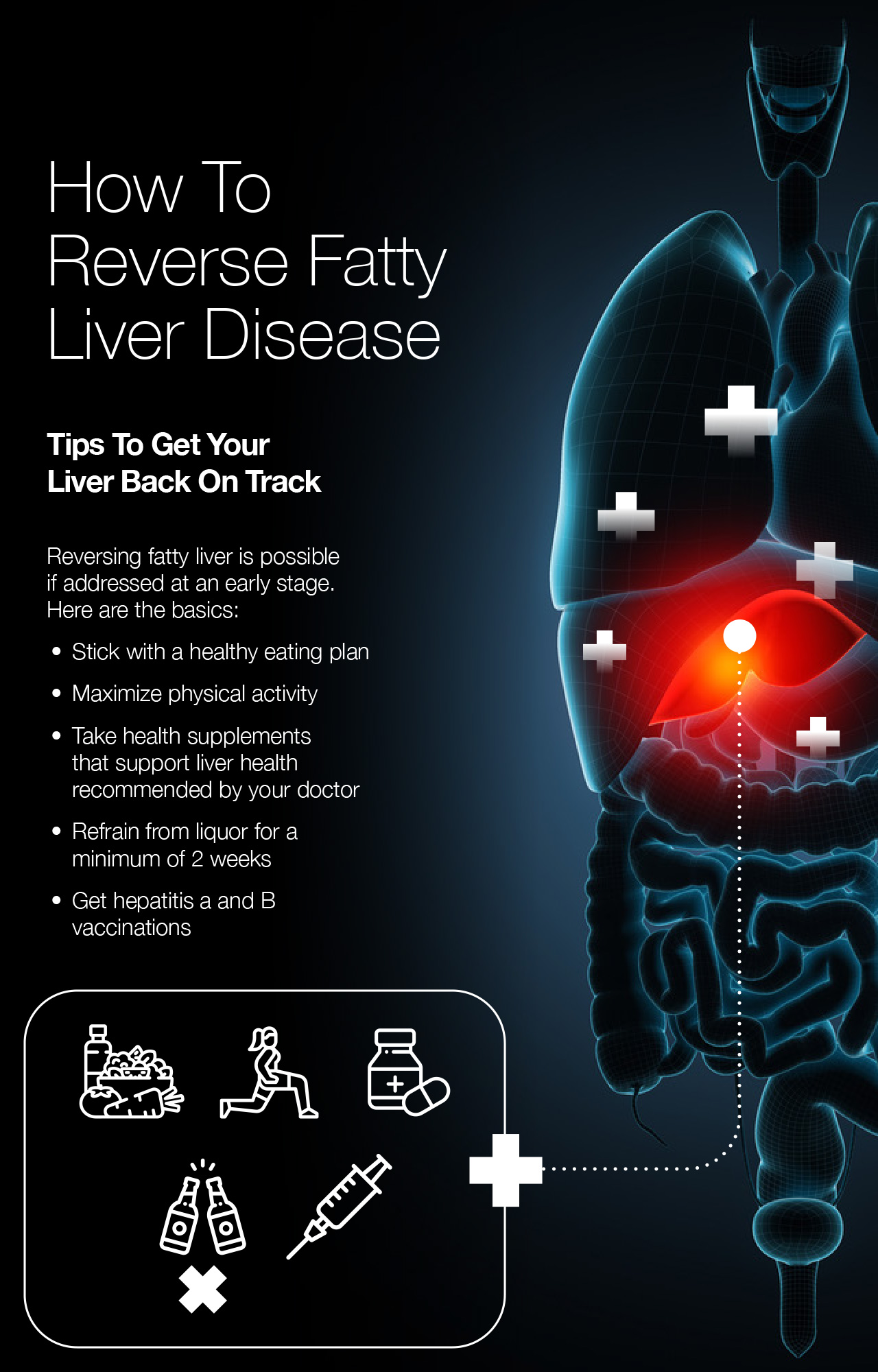How To Reverse Fatty Liver Disease