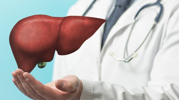 Doctor Showing Healthy Liver