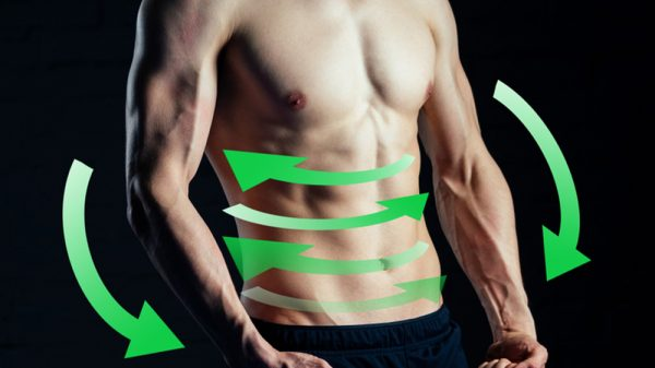 Metabolic Type Body