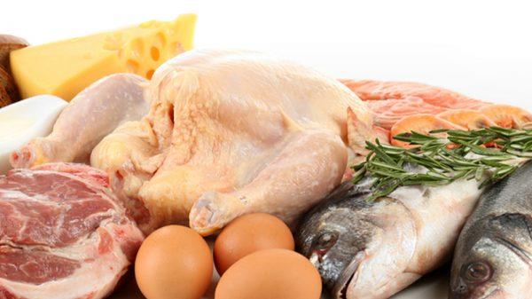 Foods high in amino acids