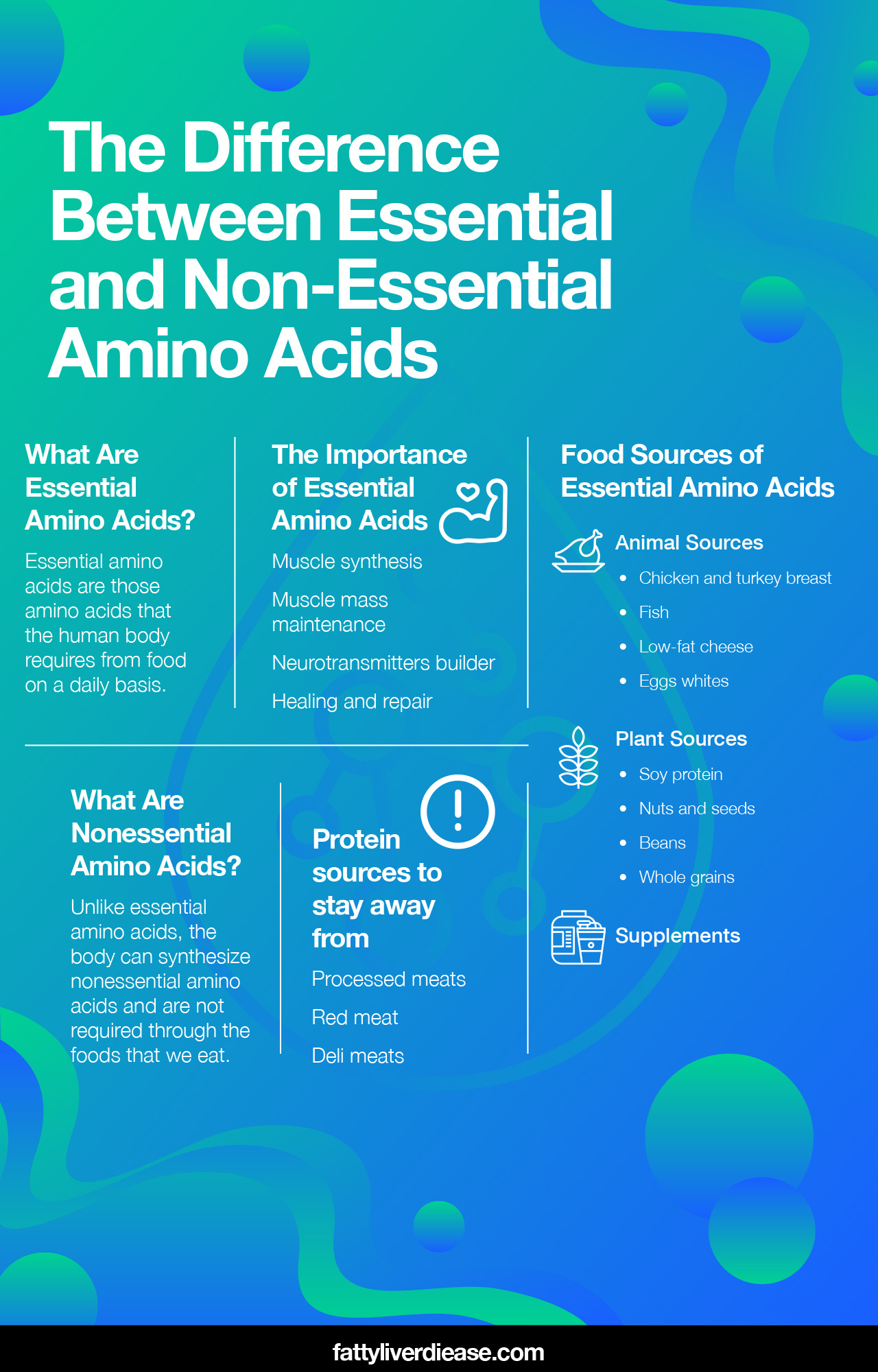 Difference Between Essential and Non-Essential Amino Acids