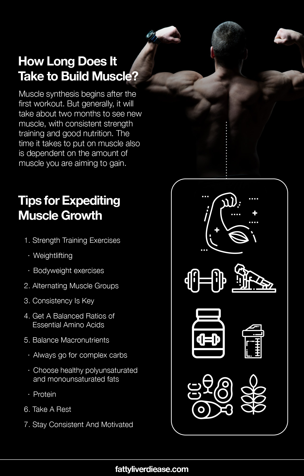 How Long Does It Take to Build Muscle?